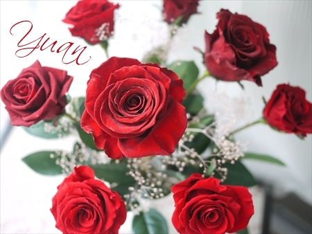 プリザーブドフラワー 赤バラ