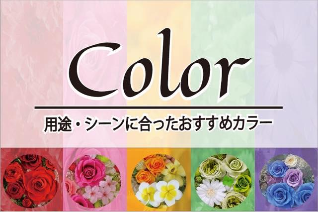プリザーブドフラワーの色について
